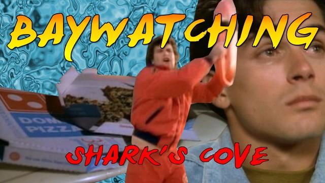 sharkscovecard